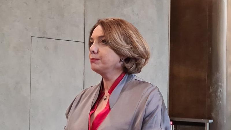 Самадашвили: «Нацдвижение» должно подписать документ, предложенный главой Евросовета
