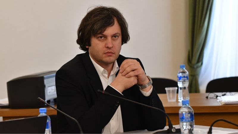 «Грузинская мечта» не намерена останавливать процесс избрания в Верховный суд