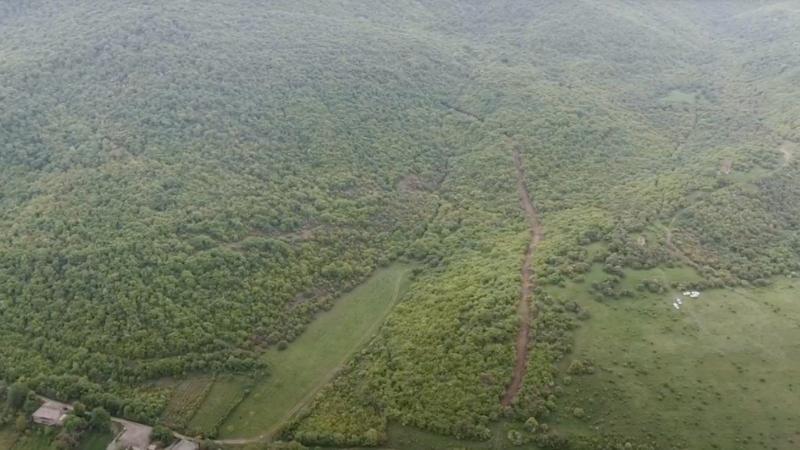 """გორაკას მიმდებარედ საოკუპაციო ხაზის გასავლებად ტყეს კაფავენ — """"ძალა ერთობაშია"""""""