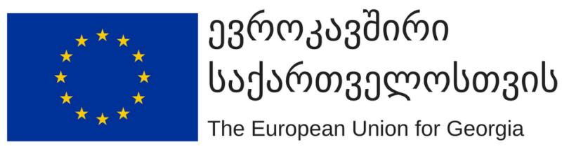 eu4georgia