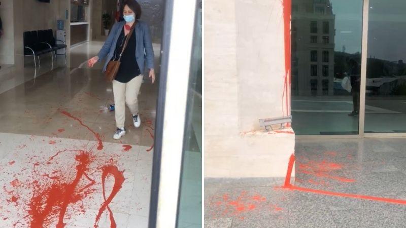 ელენე ხოშტარიამ მთავრობის შენობას წითელი საღებავი შეასხა