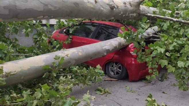 В Сухуми подсчитывают ущерб от урагана