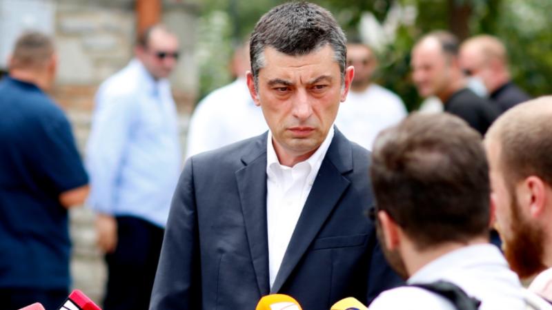 Гахария: «Я всегда сомневался в решительности боссов правящей партии»