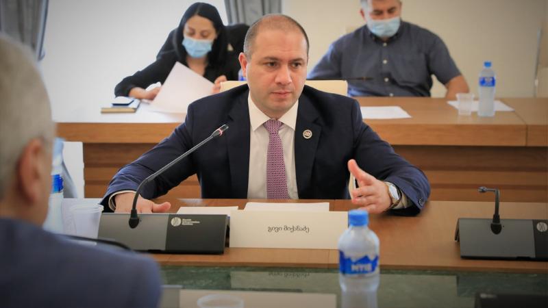 Глава парламентской комиссии о выборах: «Никаких фальсификаций не зафиксировано, лишь мелкие нарушения»
