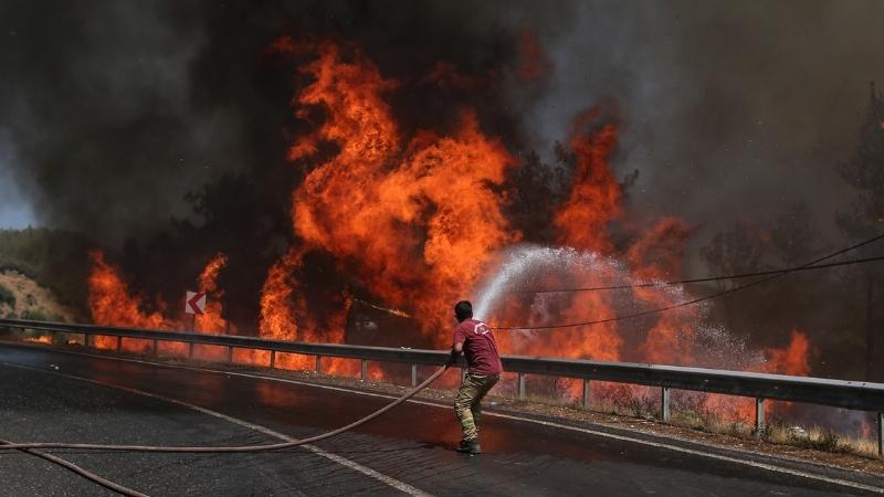 Число погибших в результате лесных пожаров в Турции увеличилось до восьми