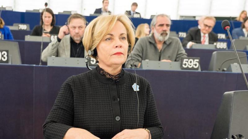 პირდაპირი აღიარებაა პრემიერისგან, რომ სააკაშვილის საქმე პოლიტიკურია – ევროპარლამენტარი